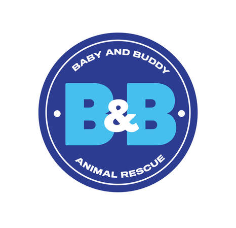 Baby & Buddy Animal Rescue